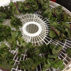 Kale Drying