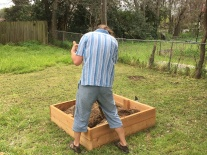 Filling the raised bed.